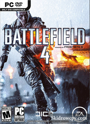 BATTLEFIELD-4-DVD-PC