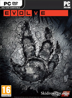 Evolve-pc-DVD