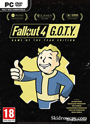FALLOUT-4-GAME-OF-THE-YEAR-EDITION-DVD-PC