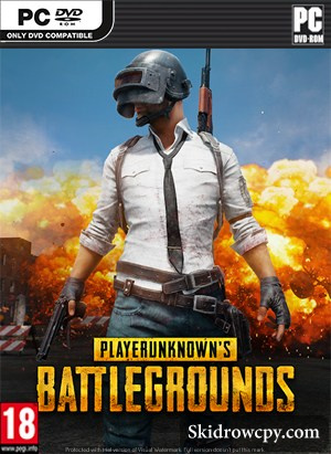PLAYERUNKNONS-BATTLEGROUNDS-DVD-PC